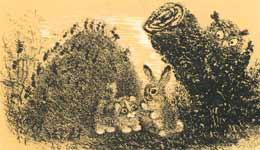 Ил. Е.Чарушина к книге Ив.Белышева «Упрямый котёнок» (М.-Л.: Детгиз, 1946)